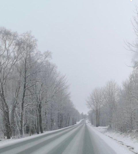 Slik så det ut langs riksvei 80, mellom Fauske og Bodø mandag morgen. Foto: An-tipser