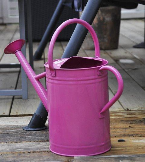 LOVLIG: Vanning med slik kanne er lov i Lunner, men ikke med hageslange. Arkivfoto