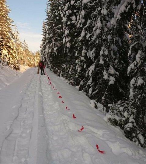 Flaggliner brukes for å få ulven i den retningen jegerne vil. Foto:Privat