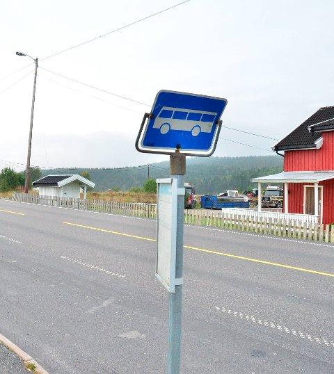 NYE BOLIGER: Aune og Hovland Eiendom AS skal bygge boliger ved busstoppet Haugentoppen langs fylkesvei 169 på Løken.