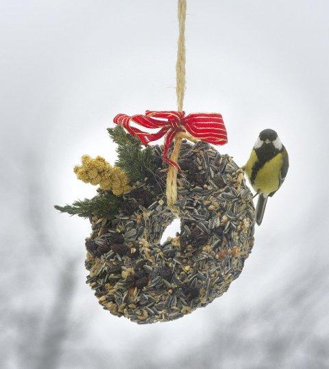 1 Favorittmat: Kjøttmeisen koser seg med den hjemmelagede fuglematen som inneholder frø, gryn, nøtter og godt med usaltet fett.