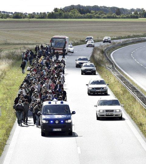 En stor gruppe flyktninger ankom Rødby ved Lolland søndag kveld. Målet er Sverige. Nå har danskene stengt grensen til Tyskland.