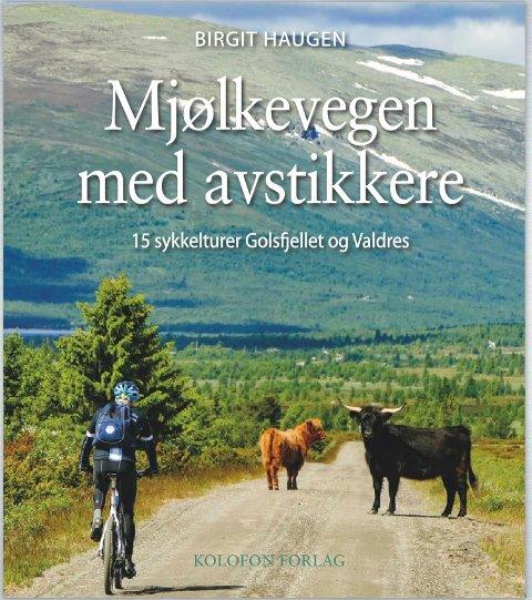 - Jeg syntes denne sykkelopplevelsen fortjente ei bok, så jeg syklet, fotograferte og skrev den, forteller Birgit Haugen.