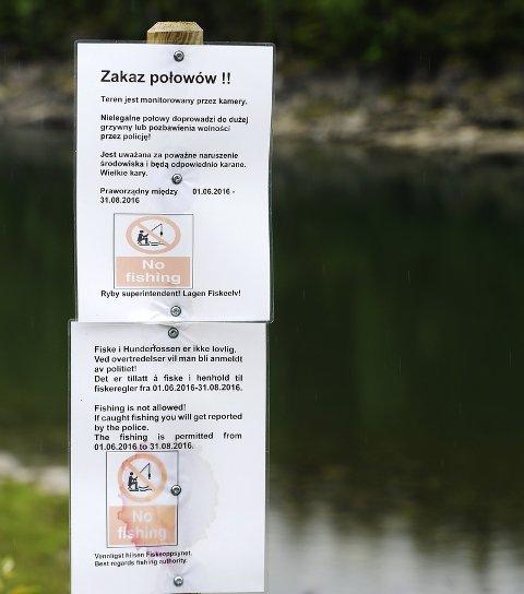 POLSK: Grunneierforeningen har tidligere merket elvebredden på flere språk for å motvirke tjuvfiske, her fra Hunderfossen i 2016.