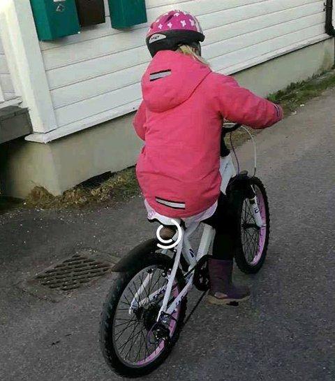 SYKKELGLEDE: Det er denne sykkelen som er stjålet.
