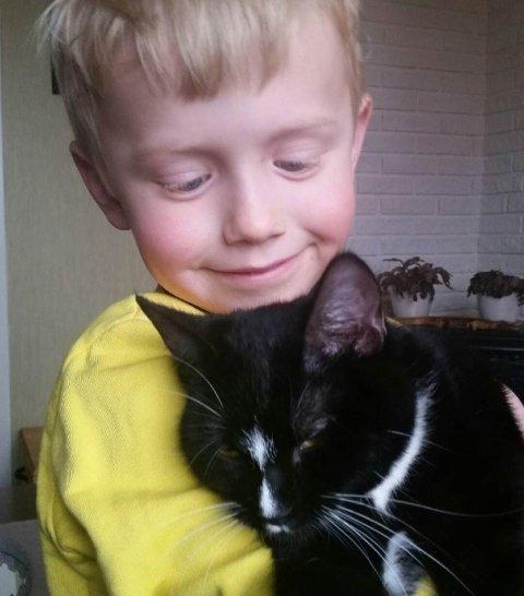 KJÆLEN: Lille Kattepus er en snill katt, men altså en utpreget samler. Her er det Oskar på seks og et halvt år som koser med familiens kjæledyr og hanskestjeler.