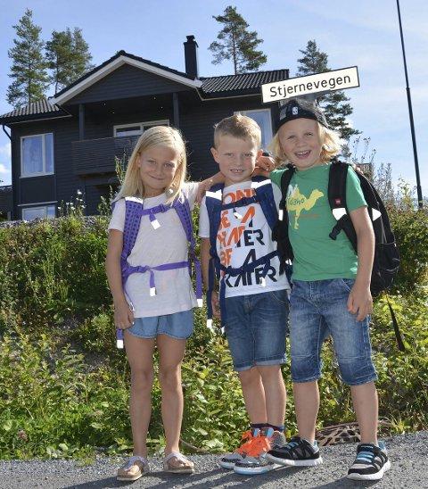 Stjernevegen: Fra denne gata er det hele seks barn som starter i 1. klasse ved Harestua skole.