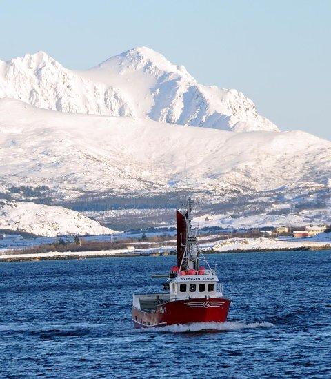 """FERDIG: """"Svendsen Senior"""" kunne sette kursen hjem til Sørarnøy etter å ha tatt kvoten på 67 tonn på 18 sjyvær."""