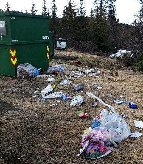 KONSEKVENSER: Her ser man av hva som kan skje når avfall settes utenfor overfylte containere. VKR ber derfor om å sjekke neste container eller levere på miljøstasjonene om det er fullt. Bildet er tatt ved Høgemyr i Sør-Aurdal.