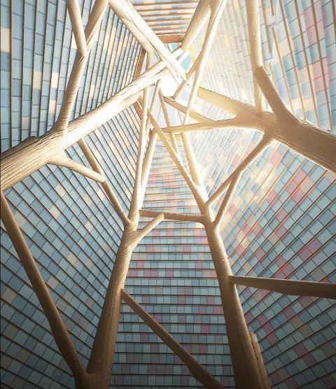 """Natur og plast: Kronene til de seks trærne """"løfter"""" plasttaket. Idéillustrasjonen viser innsiden av katedralens tak, sett nedenfra."""