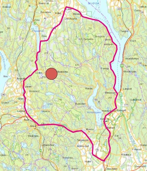 FELLINGSSONEN: Innenfor dette området er dte gitt fellingstillatelse på én ulv.