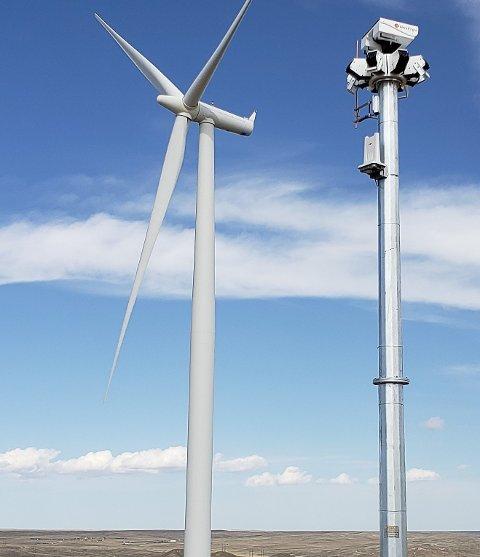 SMARTKAMERA: Et tårn med sensorteknologi og smartkameraer registrerer fart og retning på fugler, slik at rotorblad kan stoppes hvis fugler er på vei mot vindturbinene.