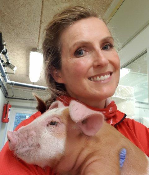 Svin: Beate Menes Didriksen, styreleder i Norsvin, framsnakker gjerne grisen, og forteller at selv om hun ikke har et personlig forhold til hvert enkelt dyr på gården, har hun et nært forhold til flokken sin.