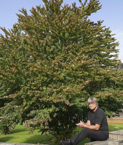 HJERTETREET: Dette vakre, sjeldne treet er det kjæreste som Milan Tevanovic har i hagen.