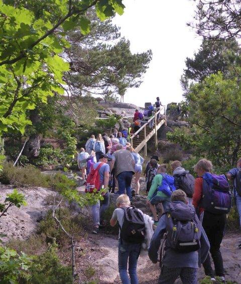 Populært turmål: Mange tar turen til Øygardsåsen på Flosta. Nå får venneforeningen lov til å bygge et flyobservasjonstårn her.
