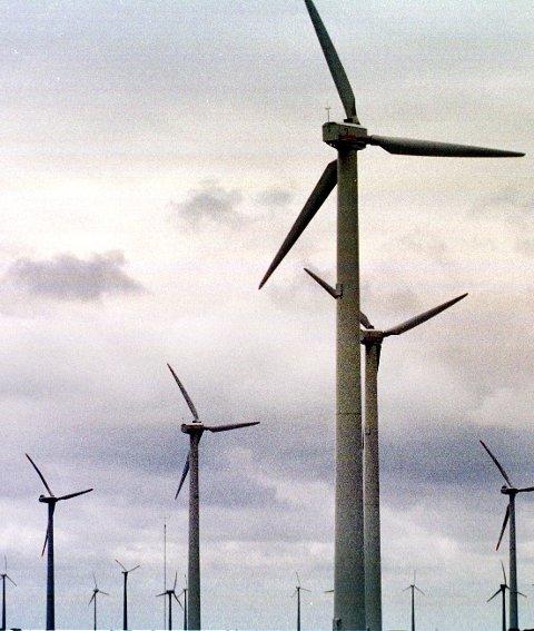 TEKST TIL BILDE NR 20040311-014:  Det blåser nok i Finnmark til å forsyne to norske storbyer med vindkraft. (Foto: Vidar Ruud, ANB)