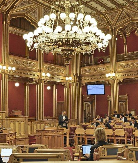 STORTINGET: Vanligvis er det kun representantene som tilhører den komiteen som har ansvar for saken, som deltar i debattene. Foto: Erlend Larsen