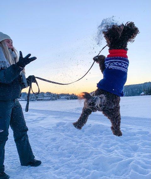 LEK: Hedda Sofie Karlsen og Bailey i snøen.