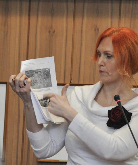 Liker ikke: Lena Hamnes likte dårlig bildene i rapporten. Hun vil ha rassikring i gangsatt så snart som mulig.