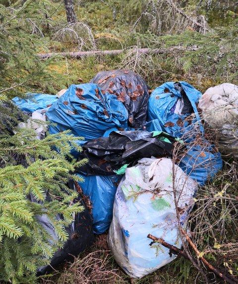 MIDT I SKOGEN: Om lag 15 sekker med avfall fra en byggeplass er dumpet i et turområde i Løten.