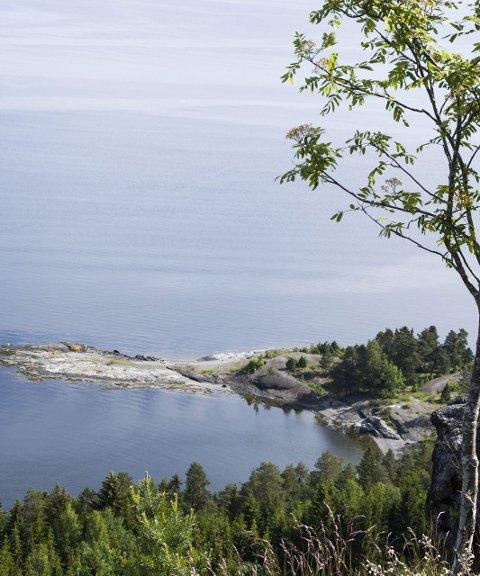 UTSIKT:  Fra Slettefjell har du en fantastisk utsikt mot Oslofjorden og ned til Varnestangen i forgrunnen. FOTO: JAN BROMS