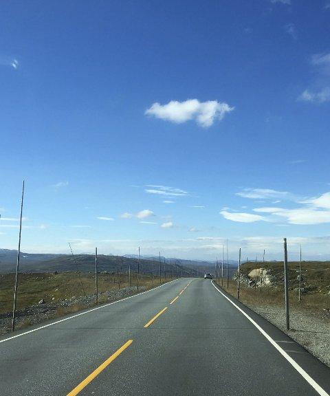 Hardangervidda: På riksveg 7 aukar trafikken.