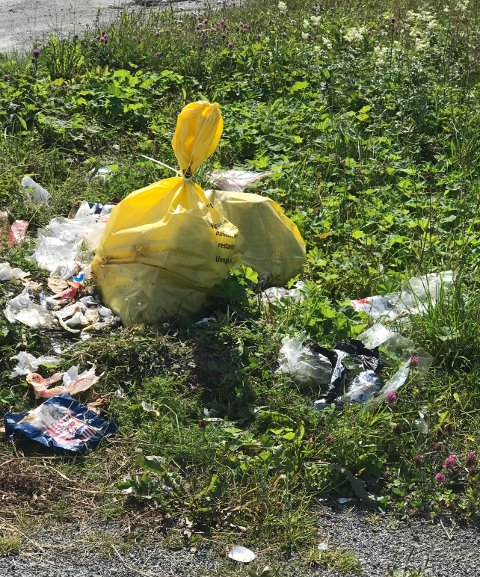 De gule søppelsekkene brukes til restavfall og skal settes ut så nært tømmedag som mulig.