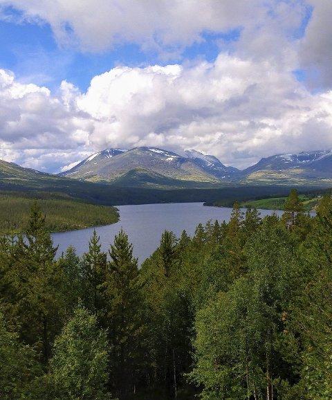 Fra Rondane: Vakker norsk natur. Foto: Maja Kraft.