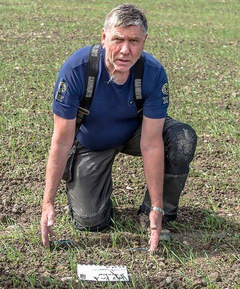 ULV: Arnkjell Johansen mener det er ulvespor som er funnet i Follo. Her ser vi Viltnemdas mann fra en ulveepisode i Kroer på våren i fjor.