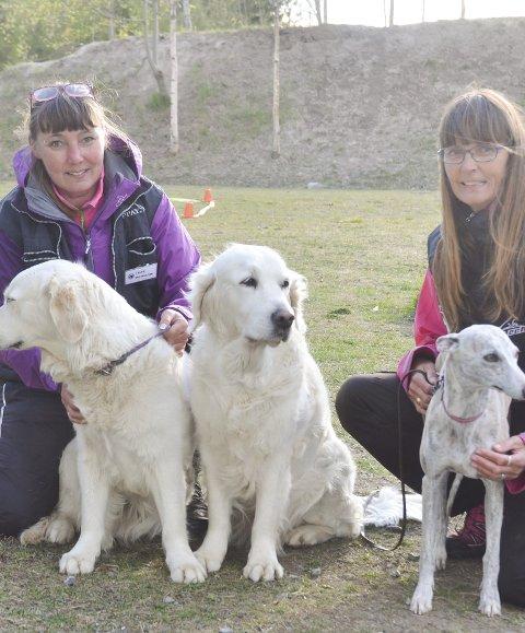 INVITERER til hundens dag: Janne Olsen (t.v.) og Kari Olsen i Aurskog-Høland Hundeklubb. foto: r. ødegård