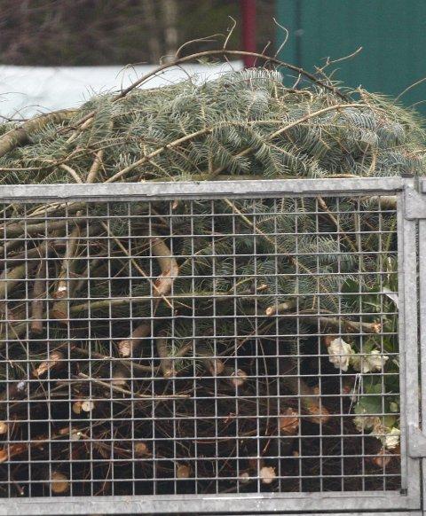 Hageavfall: Bruk gjenbruksstasjonen til hageavfallet.