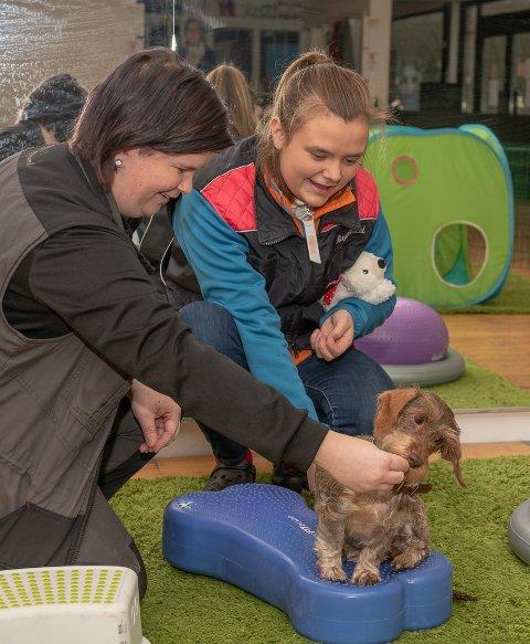 STYRKE: Instruktør Kristina Johansen med Ragnhild Wilskog og hunden hennes Augusta. Her vises hvordan en kan trene styrketrening med hunden ved hjelp av balansepute.