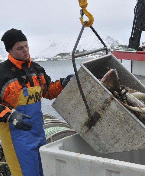 NYTT : Martin Rist Angelsen står bak det nyetablerte fiskebåtrederiet Himmeltind  Kystfiske AS på Leknes. Foto: Kai Nikolaisen