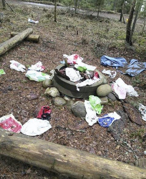 Søppel: Slik så det ut forrige gang ungene kom for å ha det hyggelig i skogen.
