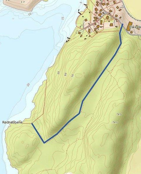 UENIGHETEN: Den blå linja markerer veien eller stien fra Eskeviken gård og ut til Rødnabbene. Tomten Sørlie har kjøpt ligger innenfor den røde streken. Området rundt eier Bjørg Molteberg.