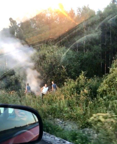 Gressbrannen langs riksveg 4 ble slukket av forbipasserende bilister.