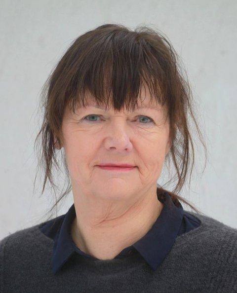 VOND SAK: Hvorfor denne kampen som splitter innbyggerne i Hole kommune? spør Anette Morén.