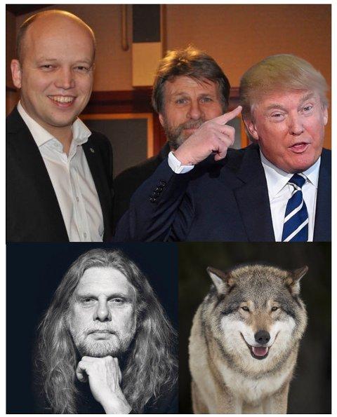 Over: Forfatteren flankert av Trygve Slagsvold Vedum og Donald Trump. Under: Arne O. Holm og ulven. Ulven til høyre