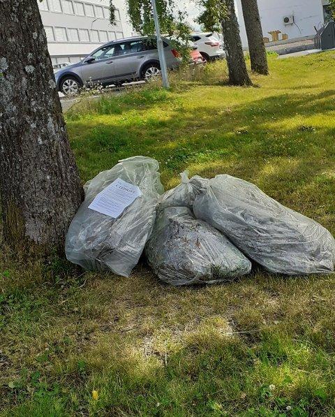 LEI: Noen har sett seg lei av buroten og dumpet fulle søppelsekker utenfor Utedrift Færder kommune.