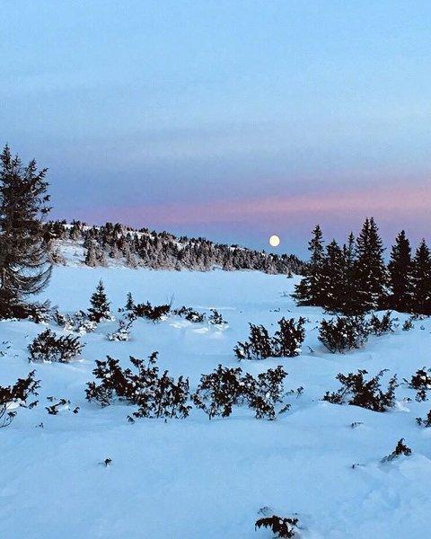 8. Iskald skitur på Nordseter. Foto: Marit Stauri