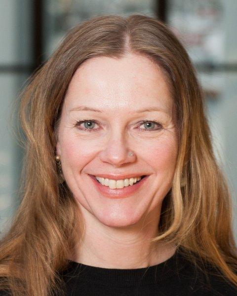 Leder i Nordland Venstre, Anja Johansen