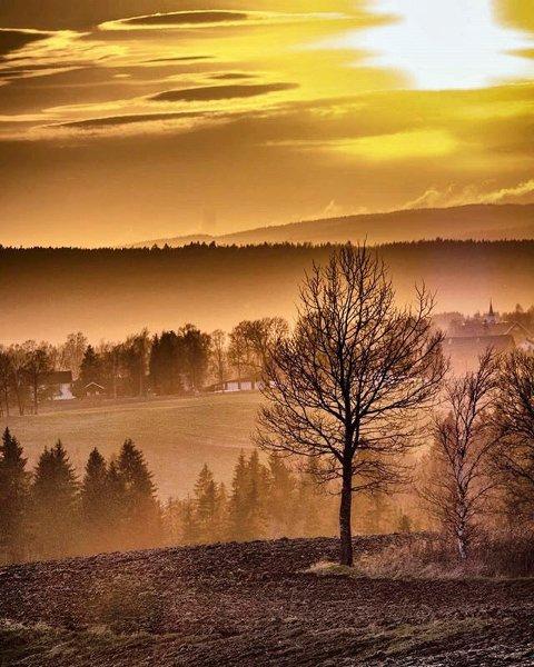 Trying out my new zoom during the  yesterday. It set the sky and mist on - - - - - - - - #kløfta #akershus #rbbilde #sunsetpic #skyonfire #goldenhourlight #landskap #landscapephoto #hobbyphotographer #amateurphoto #norgesfotografer #norgebilderno #norwaypng #yrno #norway2day #eastnorway2day #sunrise_and_sunsets #ishootmirrorless #fujix #fujifilmxt20 #xc50230mm #fujifilmx #fujifun #fujifilmnordic Foto: Remi Schau