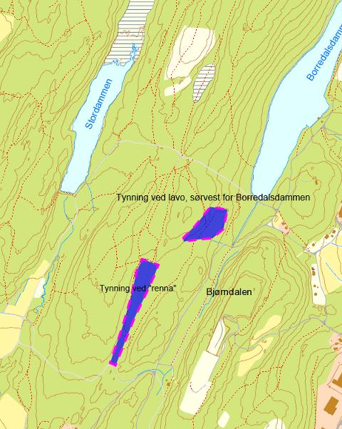 Hogstområder. Her (se skravert felt)  vil tynningshogsten bli gjennomført de nærmeste dagene.