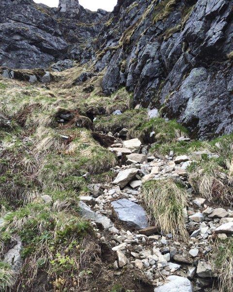 Elisabeth Pleym-Olsen har dokumentert hvordan stien til Reinebringen så ut i begynnelsen av juni i år.