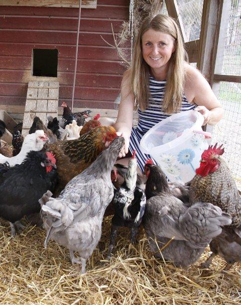 Hønsegården: er en fargerik miks av hønseraser, ender og påfugl. Når Mona kommer med bøtta, flokker de seg rundt henne.