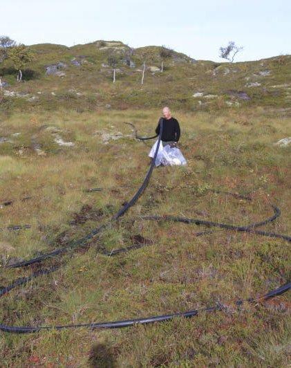 Oppdrett: En 70 meter lang foringsslange i plast fra et oppdrettsanlegg ble funnet i naturreservatet på Laukvikøyene i sommer. Den er kuttet opp, og fylt i storsekker som leveres til LAS.