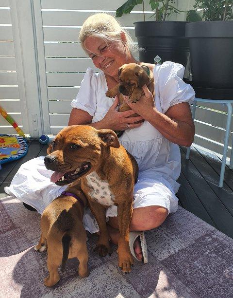 KOSER SEG I SOLA: Pia Olsen, hunden Nala og valpene hennes koser seg ute i solen
