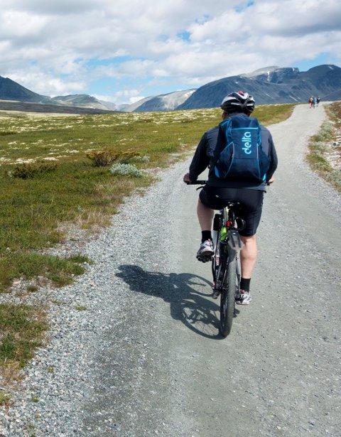 Rondane  20170710. Sykling inn i Rondane nasjonalpark. Modellklarert  Foto: Gorm Kallestad / NTB scanpix