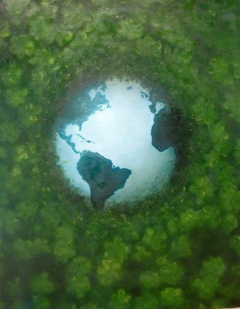 """Mother Earth hiding from man"" av Tom Erik Andersen."