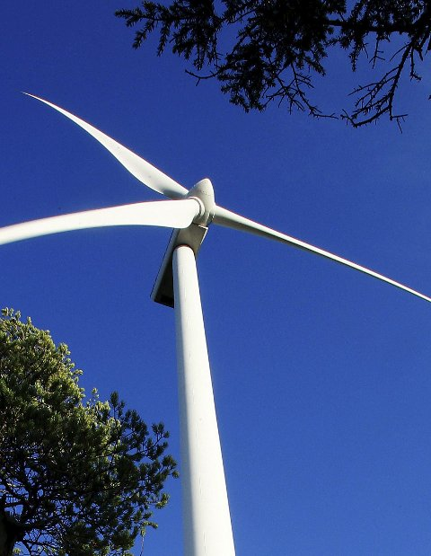 Grønt lys: Bildet er fra Sverige, men nå skal vindmøller reises i Nord-Odal.